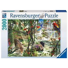Puzzle Animaux dans la jungle 2000p - Ravensburger