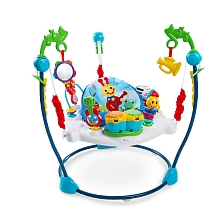 Baby Einstein - Jumperoo ''Neighborhood Symphony'' - Kids II